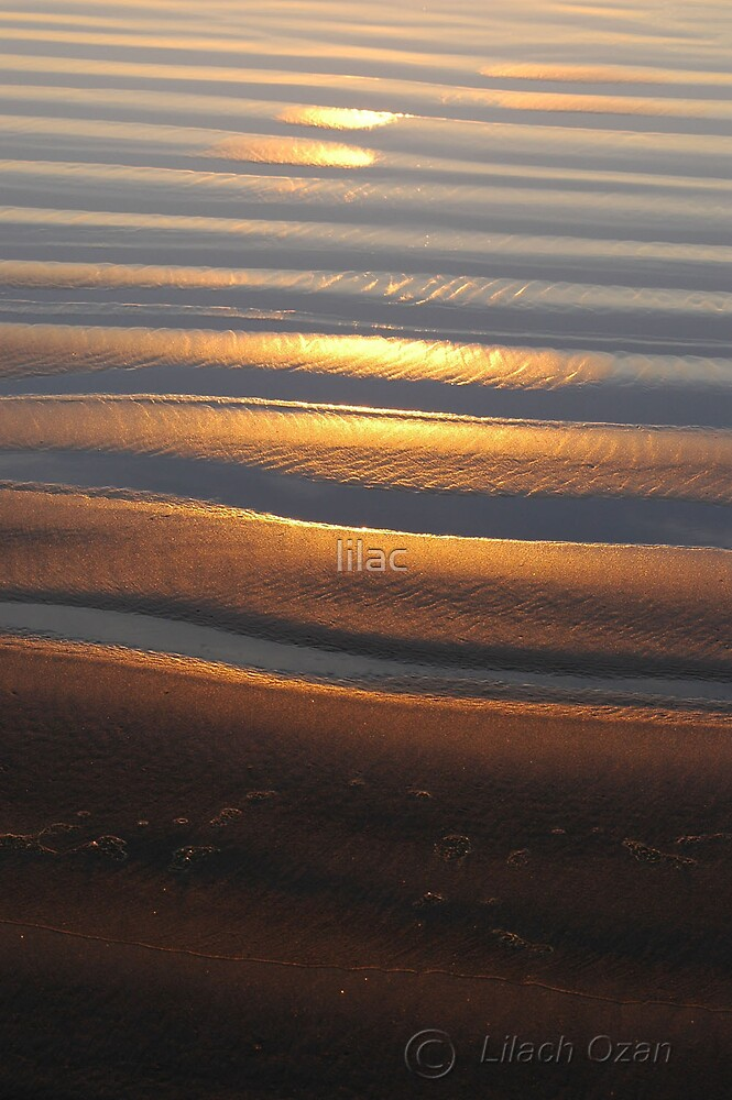 Sand by lilac
