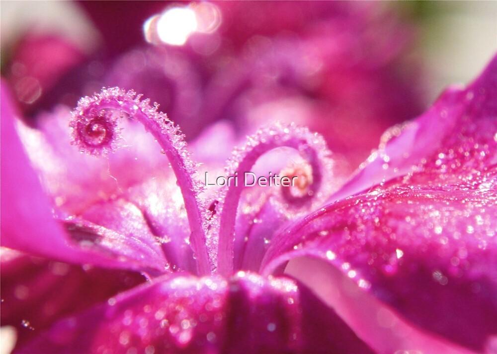 Pink Dew by Lori Deiter