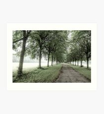 The way to Fontainebleau Art Print