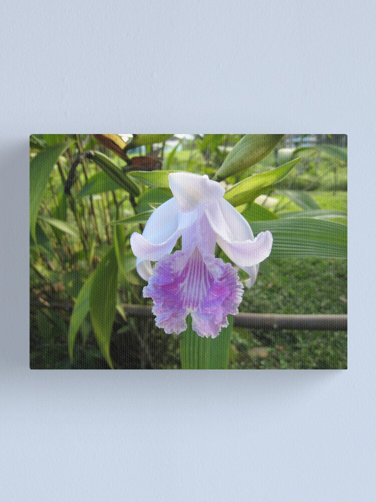 Alternate view of Jungle Orchid Canvas Print