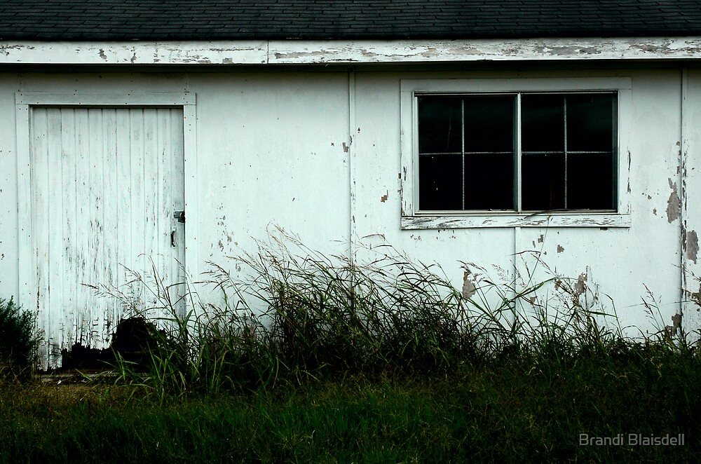 A Toxic Warehouse by Brandi Blaisdell
