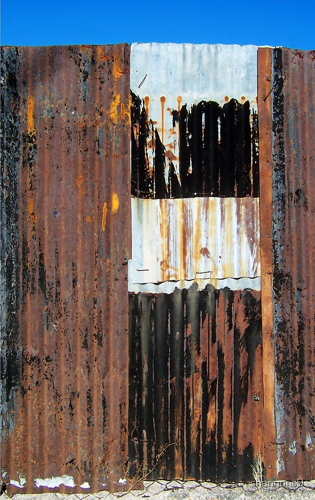 Rusted Beauty by shannons9