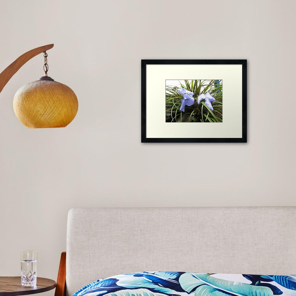 Wet Blue Framed Art Print