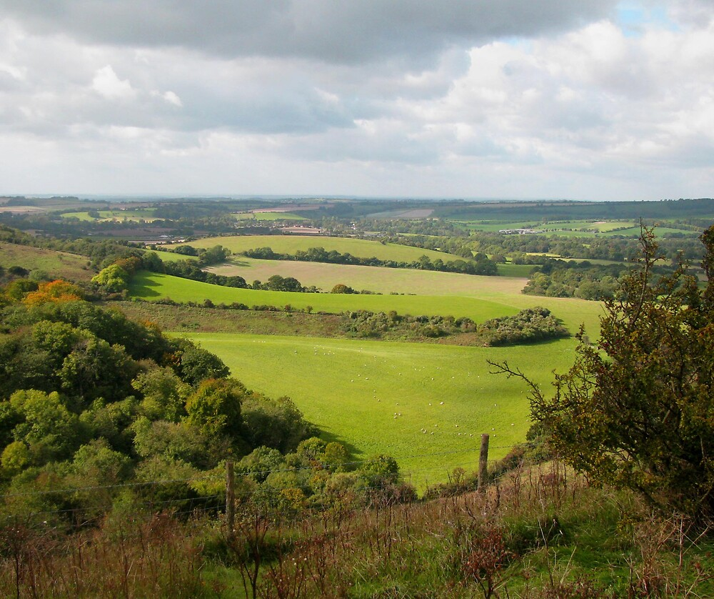 Meon Valley by Caroline Anderson
