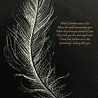 White Feathers  by David Hayes