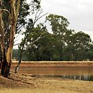Country Dam by Lozzar Landscape