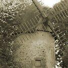 Windmill by Pamela Jayne Smith