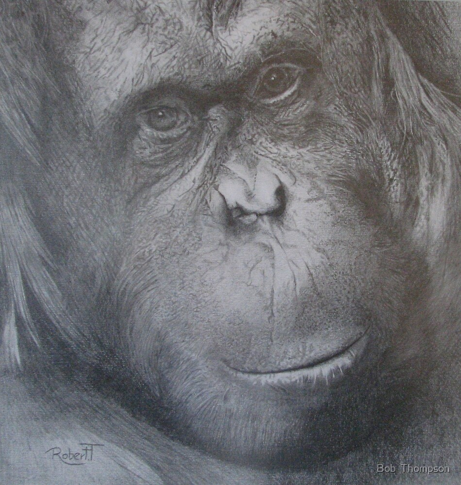 Old Woman Of Borneo by Bob  Thompson