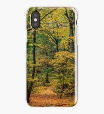 October Forest 3 iPhone Case/Skin