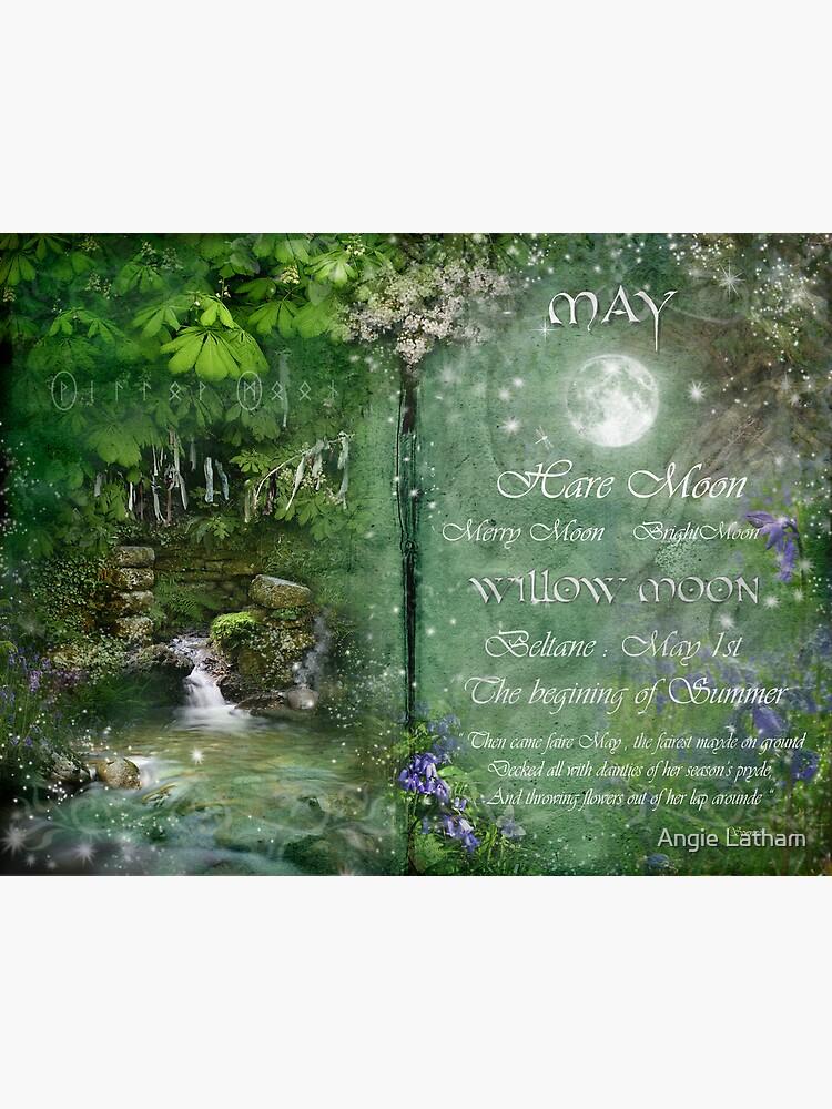 May - Willow Moon by AngelaBarnett