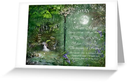 May - Willow Moon by Angie Latham