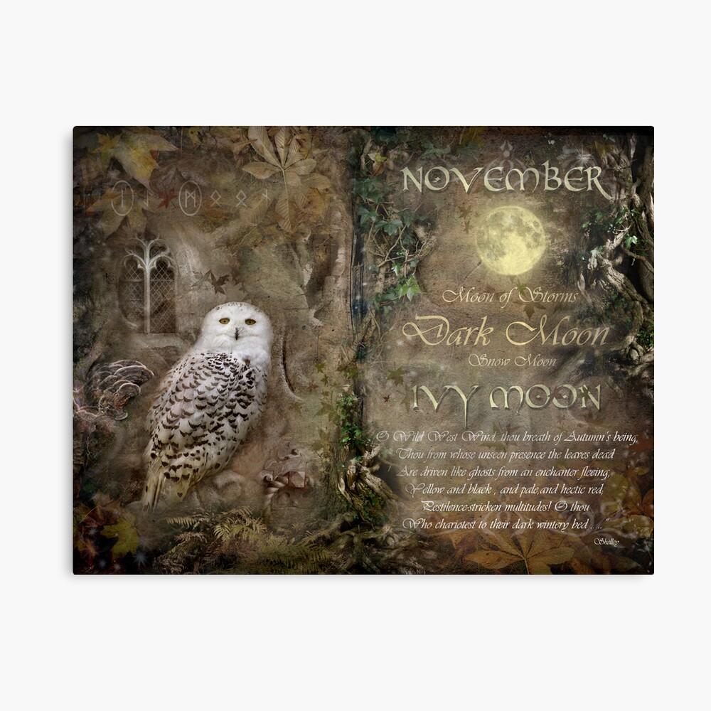 November - Ivy Moon Canvas Print