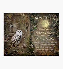 November - Ivy Moon Photographic Print