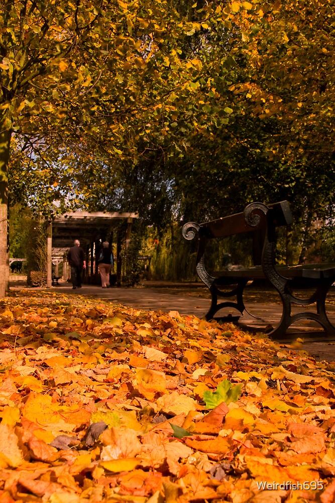Autumn Stroll by Weirdfish695
