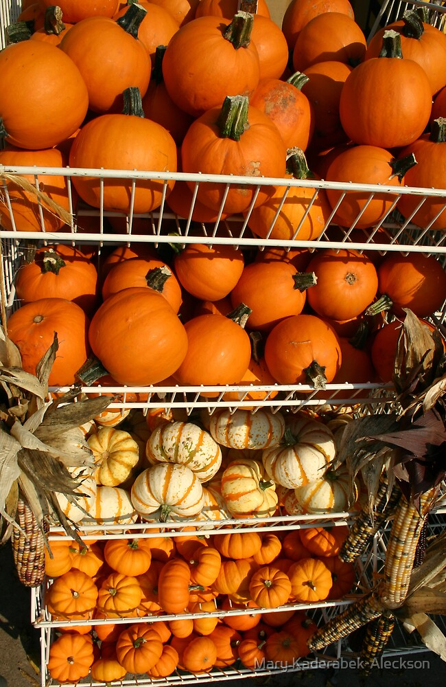 Pumps and Gourds  by Mary Kaderabek-Aleckson