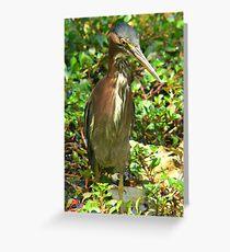 Tarjeta de felicitación Bird stance