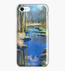 Spring Creek. Deer Lake Park iPhone Case/Skin