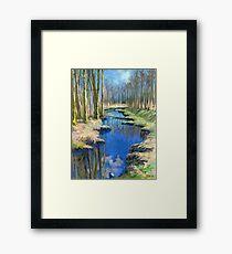 Spring Creek. Deer Lake Park Framed Print
