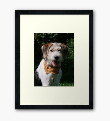 Good News for Rufus Framed Print