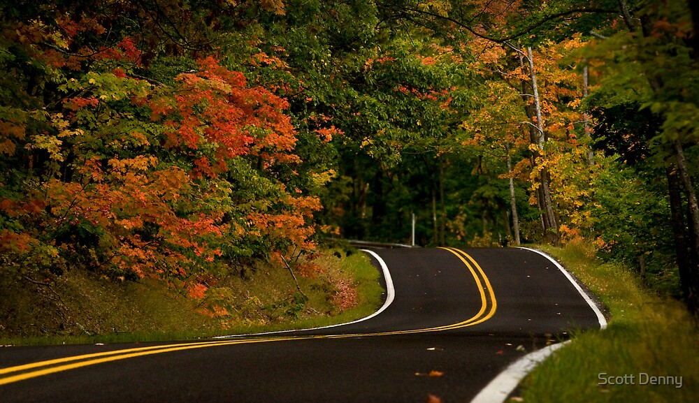 Ease On Down The Road by Scott Denny