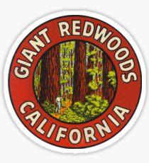 Giant Redwoods Of California Vintage Retro Travel Decal Sticker