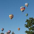Balloon Escape by CassPics