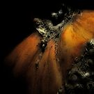 October Pumpkin by Jing3011