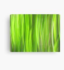 Grass - Light Canvas Print