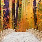 Pine Bank Splendor by Jessica Jenney