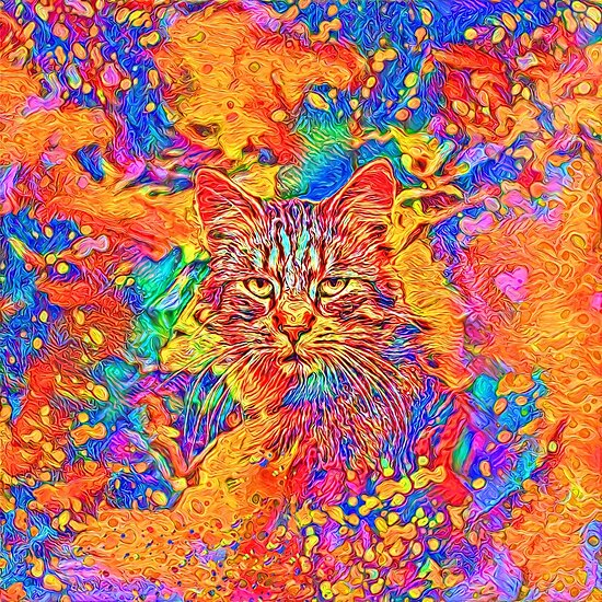 A colorful dramatic Cat is sitting on a colorful quilt