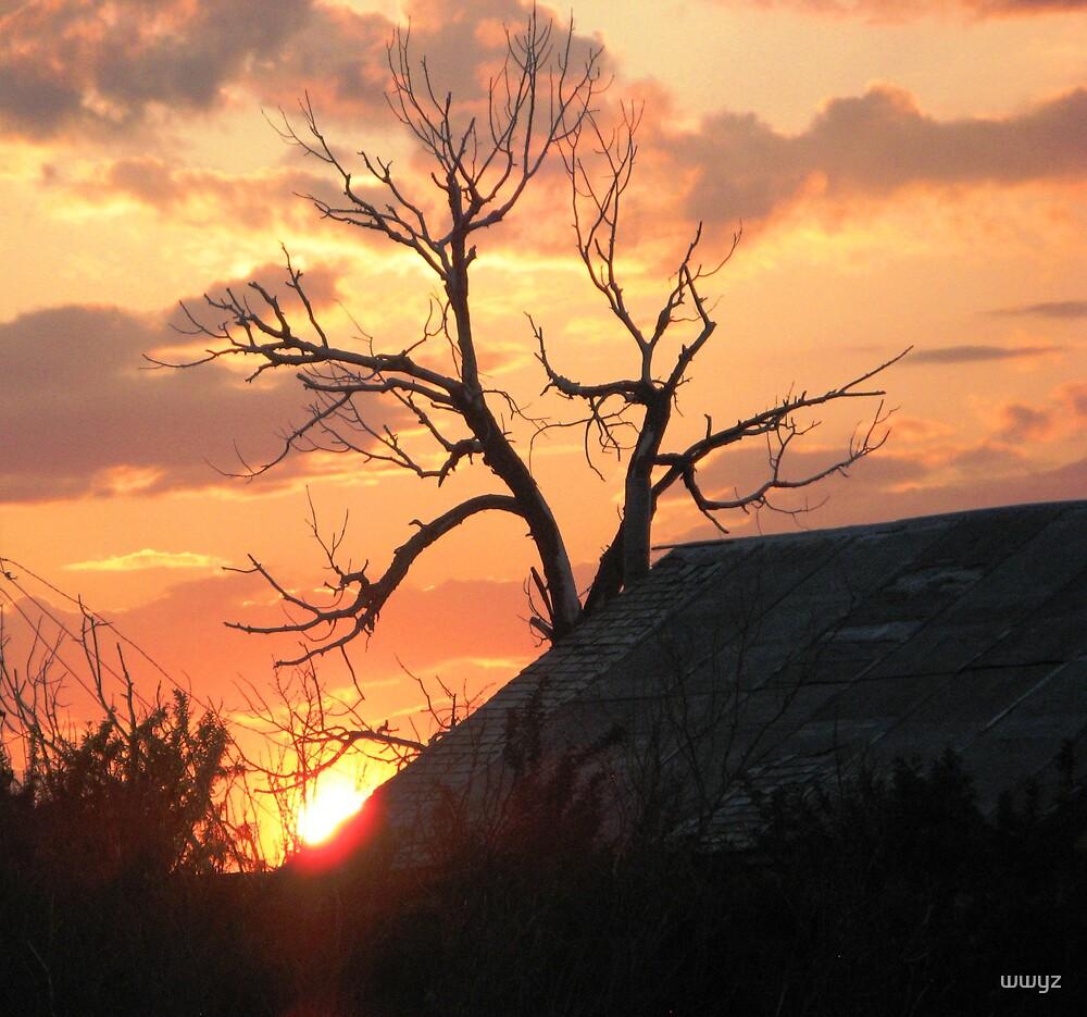 A Tree Named Screech by wwyz