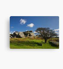 Combshead Tor Dartmoor Canvas Print
