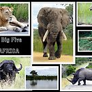 The famous *BIG FIVE* by Elizabeth Kendall