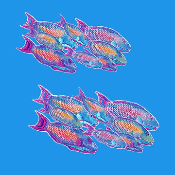 Parrot Fish Cushion by MiMiDesigns