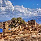 Chalki Ruin by Tom Gomez