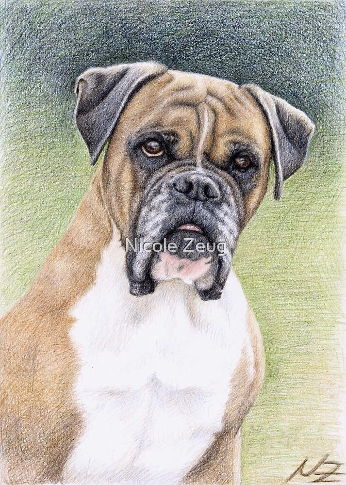 Portrait Boxer Hutch by Nicole Zeug
