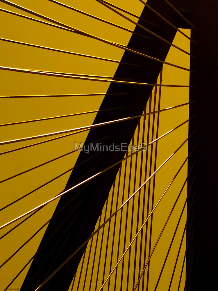 The Golden Perspective by Mary Campbell