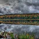 Cloudy Autumn Day by BigD