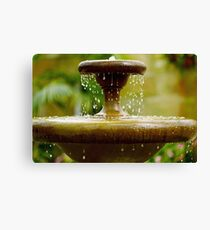 Hobart Conservatory Water Fountain Canvas Print