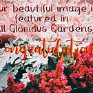 AGG - Congrats - Featured Image by MotherNature