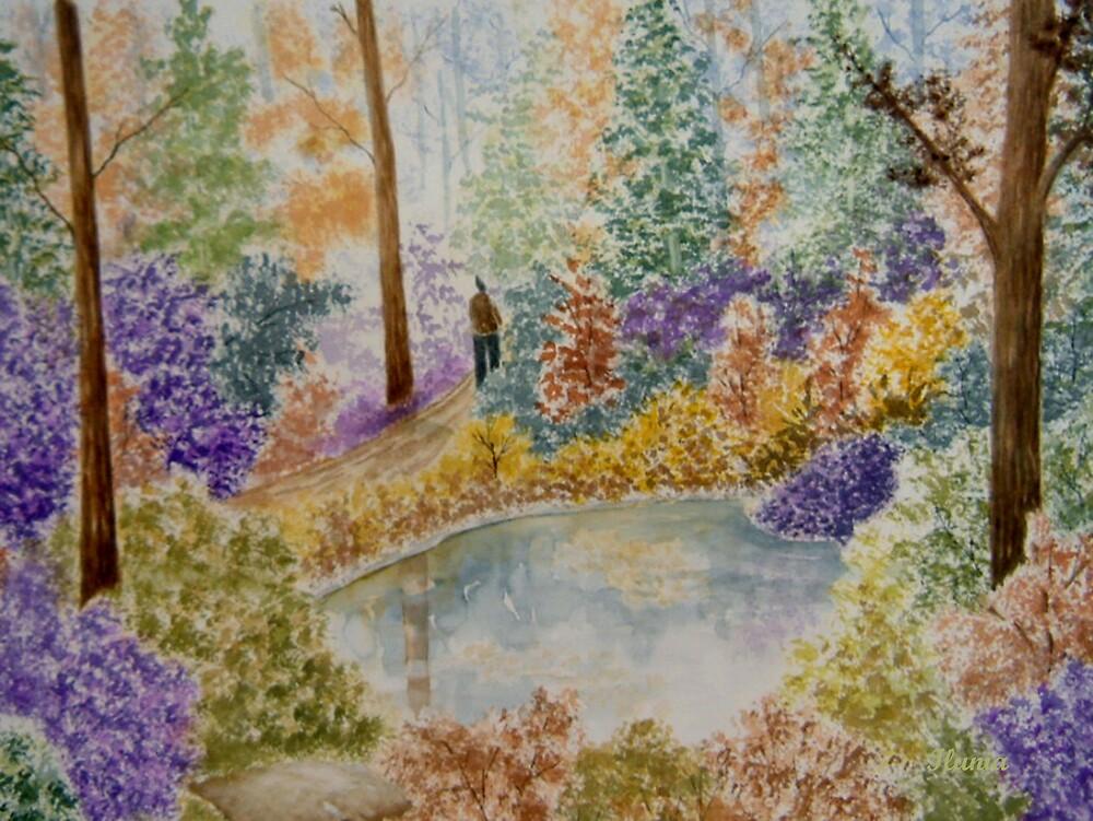 Autumn Forest  by Ilunia Felczer