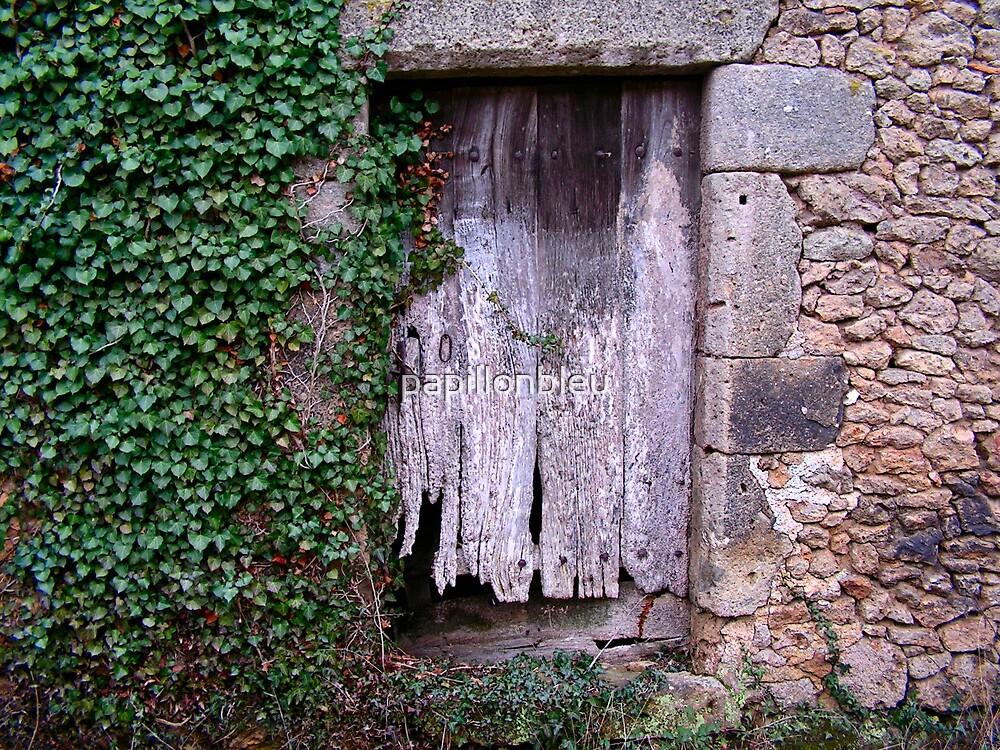 Doorway by Pamela Jayne Smith
