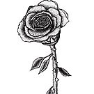 Stippled pen and ink rose  by carlac