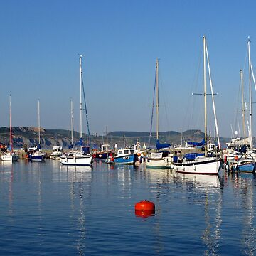 Lyme Harbour Evening by lynn45