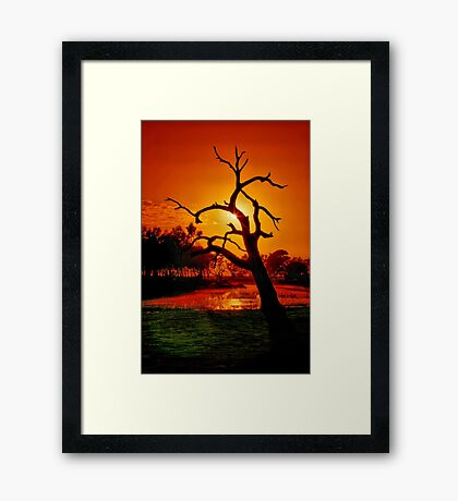 """Anticipation Rewarded"" Framed Print"