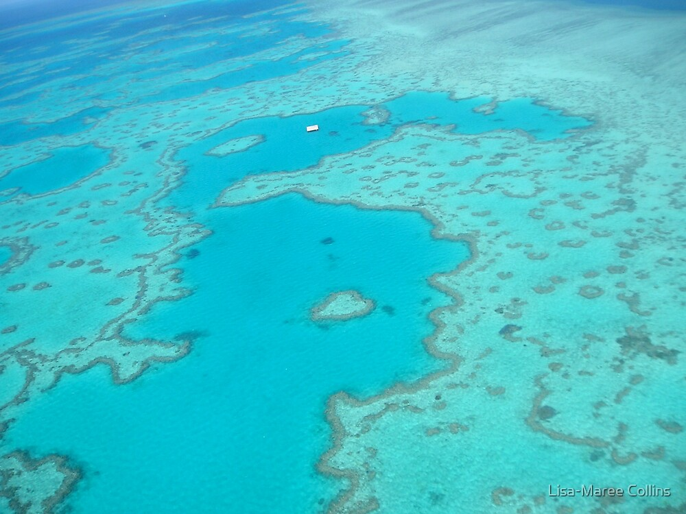 Great Barrier Reef by Lisa-Maree Collins