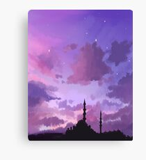 said the sky Canvas Print