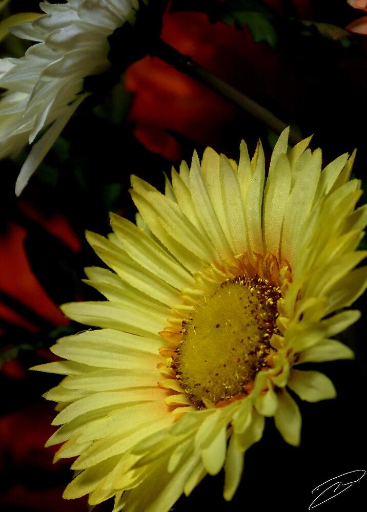 Fall Flowers by David W Kirk