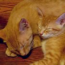 Baby Butterbean and Big Brother Tooey by Vivian Eagleson