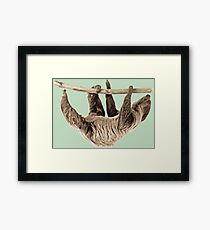 Love your Sloth | Animals Framed Print